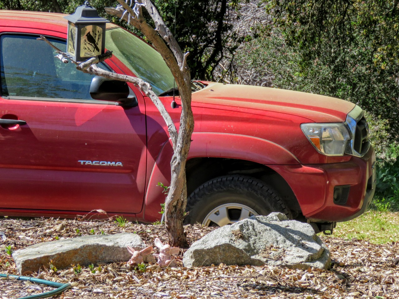 truck pollen2