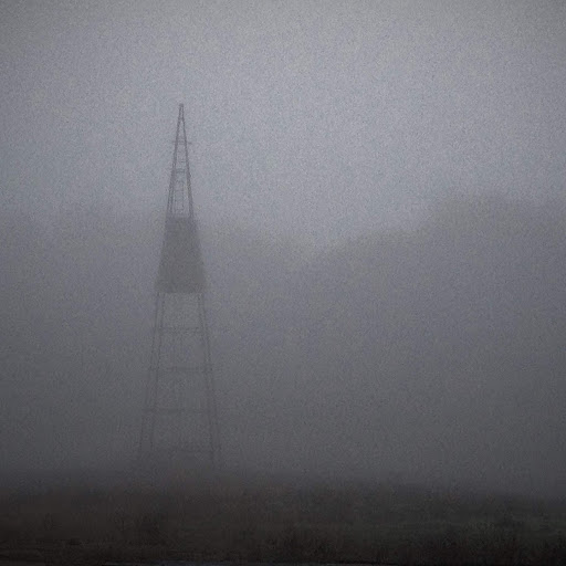 field in fog2