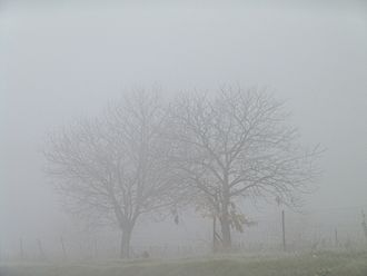 Winter Holiday Writing Prompt: The Fog of Christmas- Gael Mueller