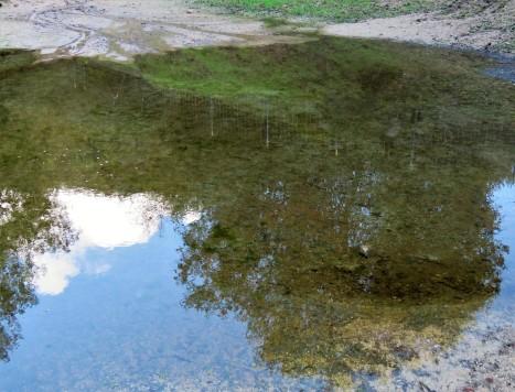 Mueller Lake reflections