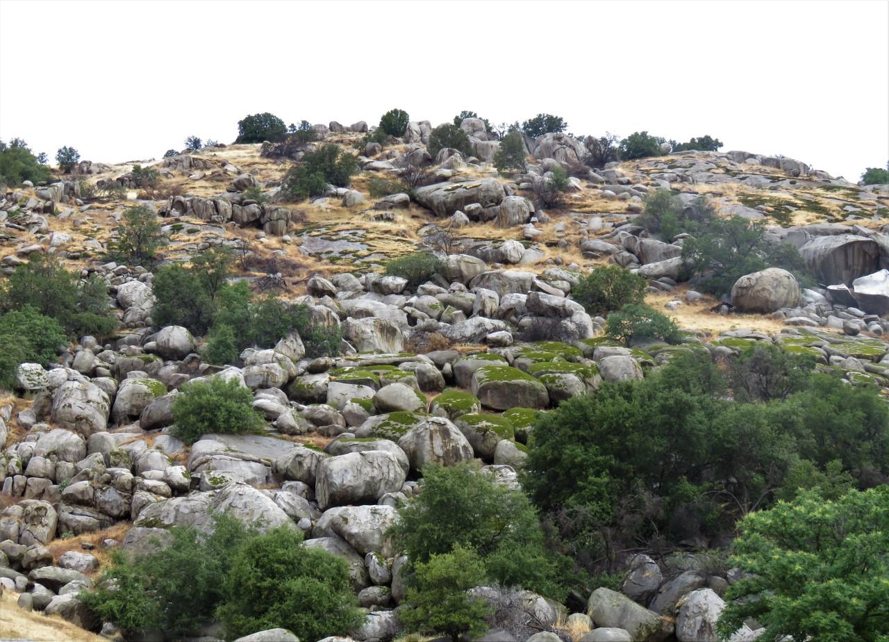 rocky hill3
